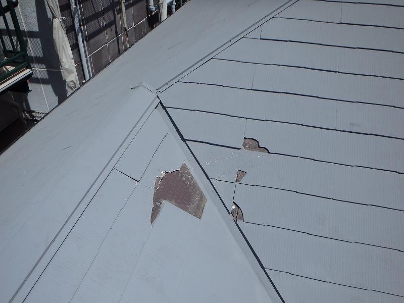 築20年神戸市 台風により屋根が損傷!雨漏りする前に工事を。
